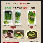 野菜の日イベント